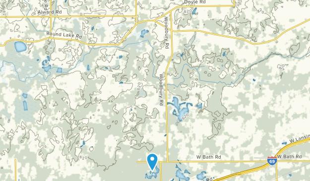 Laingsburg, Michigan Map