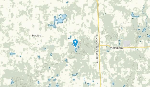 Metamora, Michigan Map