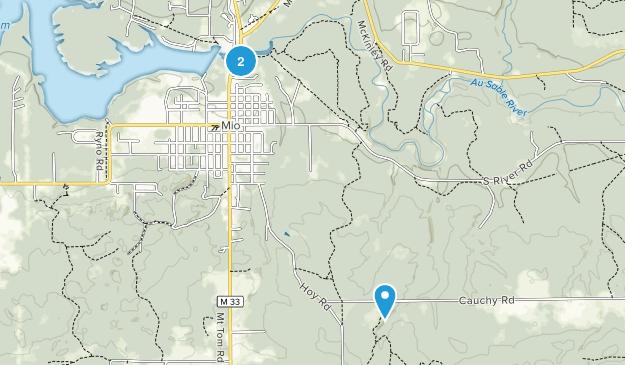 Mio, Michigan Map