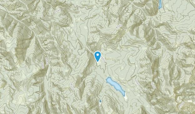 Patterson, Montana Map