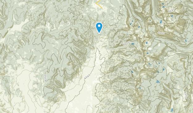 Polaris, Montana Map