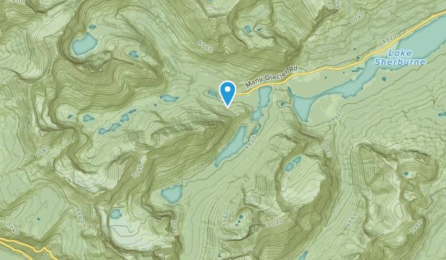 Swiftcurrent, Montana Map