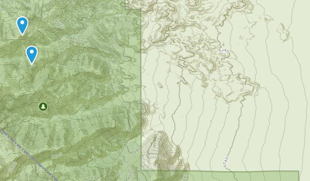 Dyer, Nevada Map