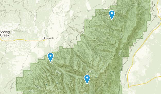 Lamoille, Nevada Map