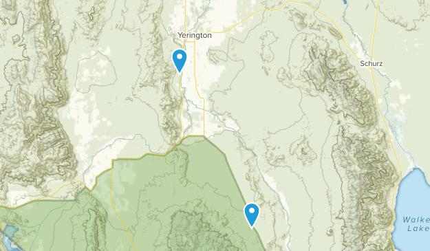 Best Trails near Yerington, Nevada   AllTrails on alamo nv map, winnemucca nv map, california nv map, summerlin south nv map, mound house nv map, vya nv map, needles nv map, las vegas nv map, stead nv map, silver peak nv map, gardnerville nv map, mason valley nv map, coyote springs nv map, st. george nv map, reno nv map, panaca nv map, valley of fire nv map, kingston nv map, duckwater nv map, pahrump nv map,
