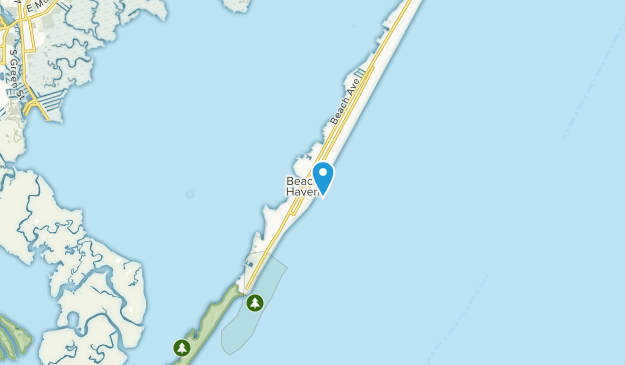 Beste Wege in der Nähe von Beach Haven, New Jersey | AllTrails