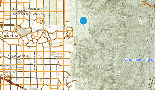 Chelwood Park, New Mexico Map