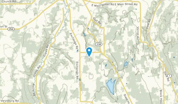 Attica, New York Map