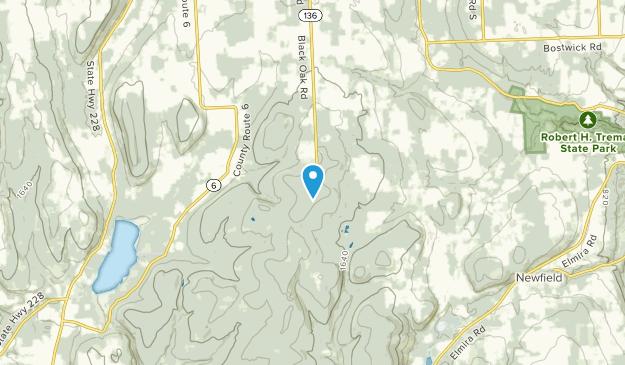 Cayutaville, New York Map
