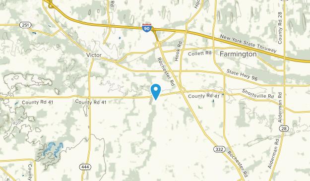 Farmington, New York Map