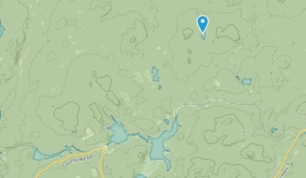 Newton Falls, New York Map