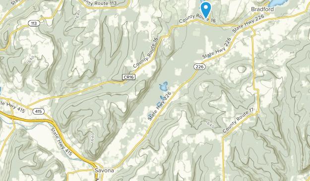 Savona, New York Map