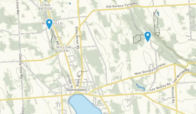 Skaneateles, New York Map