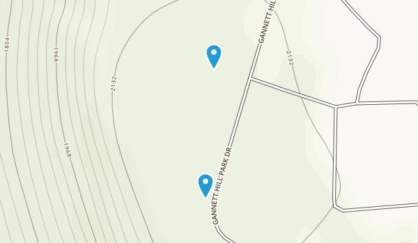 South Bristol, New York Map