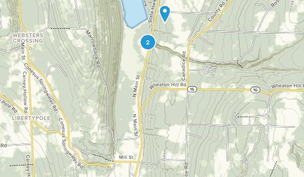 Springwater, New York Map