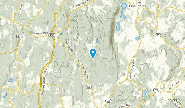 Stissing, New York Map