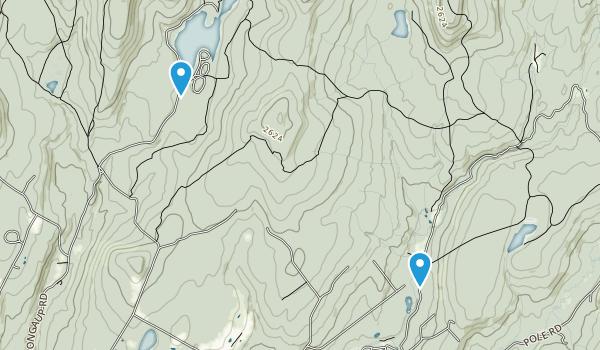 Willowemoc, New York Map