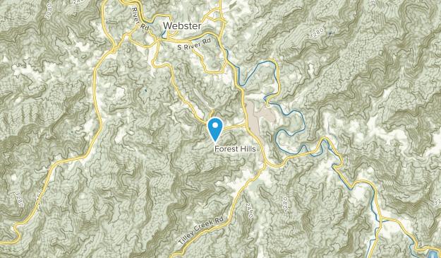 Forest Hills, North Carolina Map