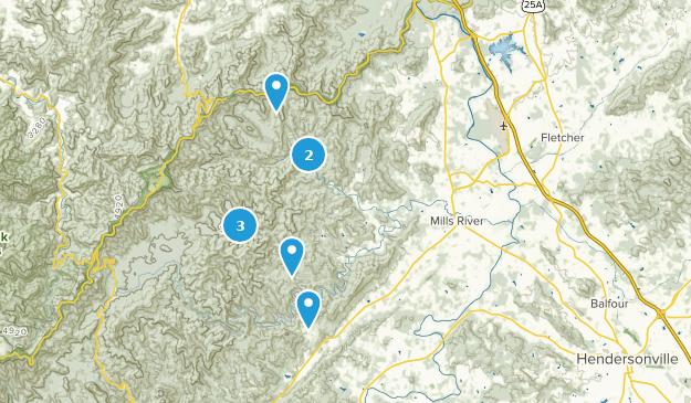 Horse Shoe, North Carolina Map