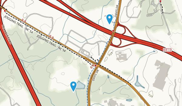Nelson, North Carolina Map