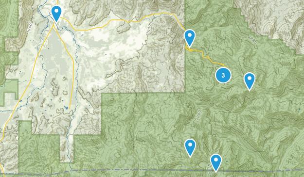 Cave Junction, Oregon Map