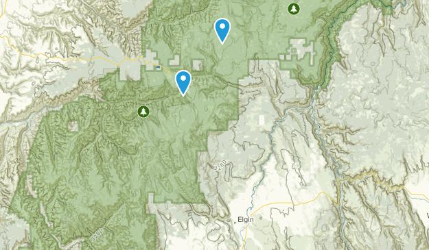 Elgin, Oregon Map