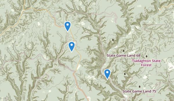Cammal, Pennsylvania Map