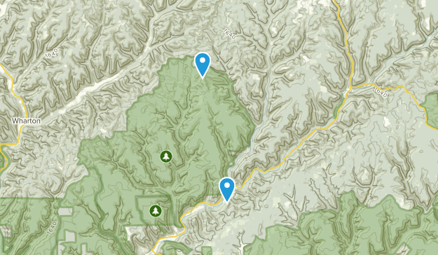 Cross Fork, Pennsylvania Map