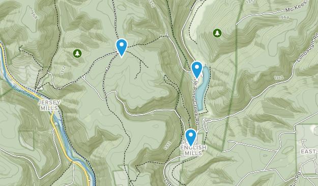 Cummings Twp, Pennsylvania Map