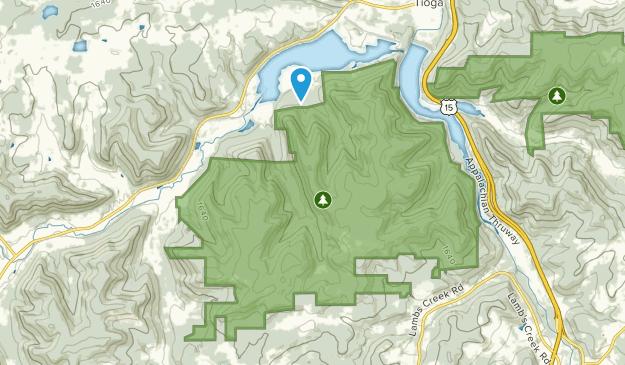 Mansfield, Pennsylvania Map