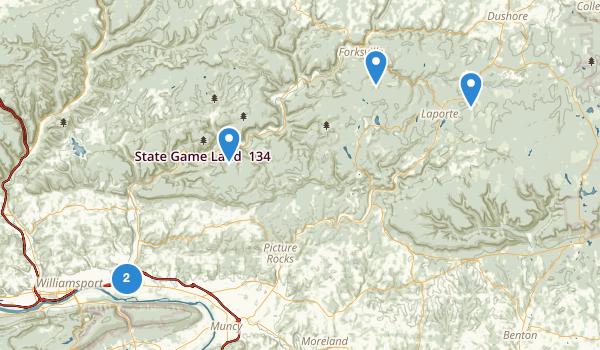 Montoursville, Pennsylvania Map