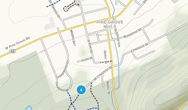 Pine Grove Mills, Pennsylvania Map