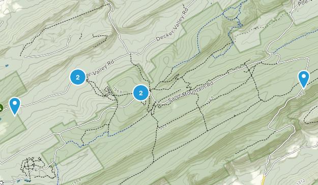 Spring Mills, Pennsylvania Map