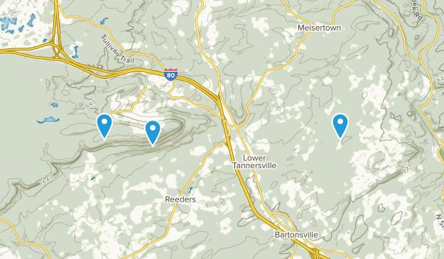 Tannersville, Pennsylvania Map