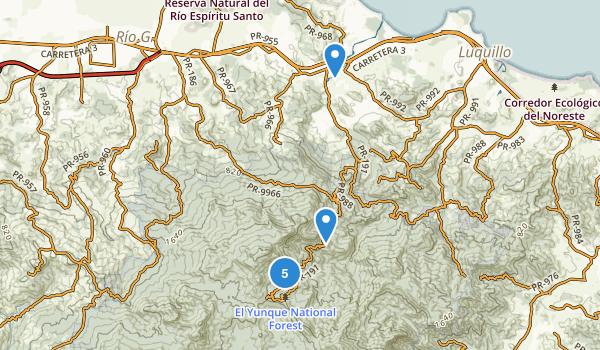 Campamento Zarzal, Puerto Rico Map