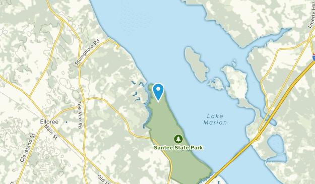 Elloree, South Carolina Map