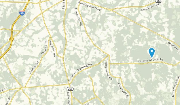 Manning, South Carolina Map