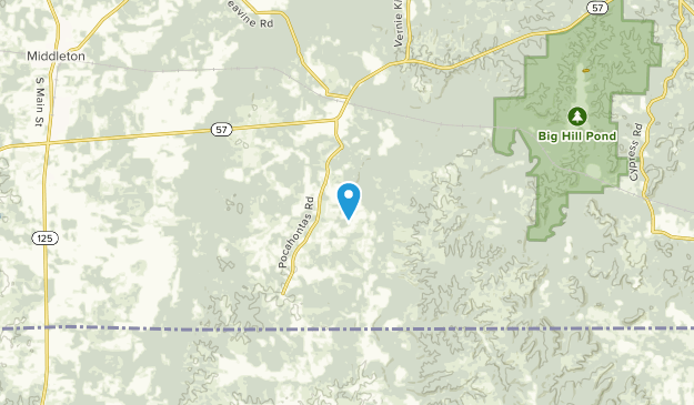 Essary Springs, Tennessee Map