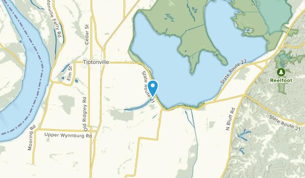 Reelfoot Lake Tennessee Map.Best Trails Near Lake Drive Tennessee Alltrails