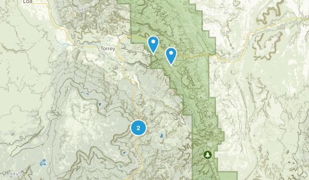 Fruita, Utah Map