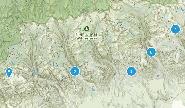 Roosevelt, Utah Map