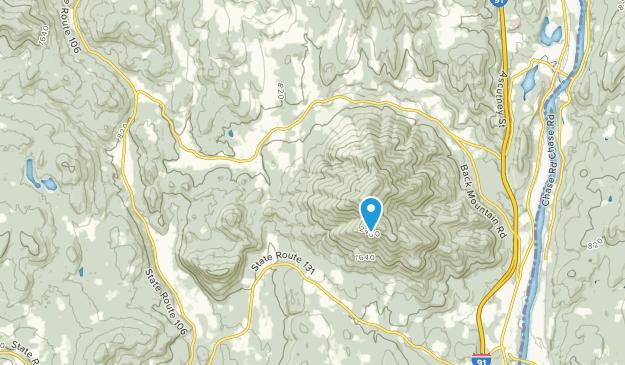Brownsville, Vermont Map