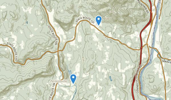 Perkinsville, Vermont Map