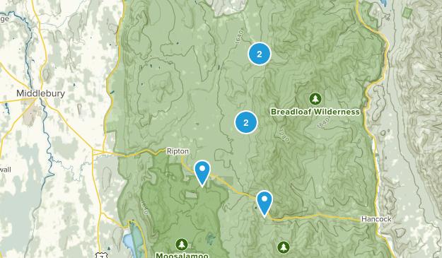 Ripton, Vermont Map