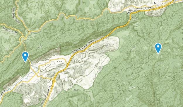 Big Stone Gap, Virginia Map