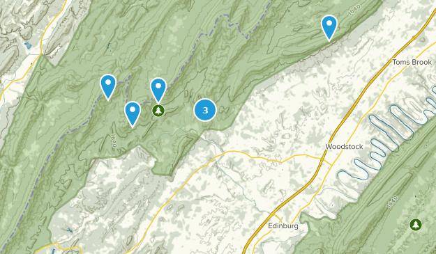 Edinburg, Virginia Map