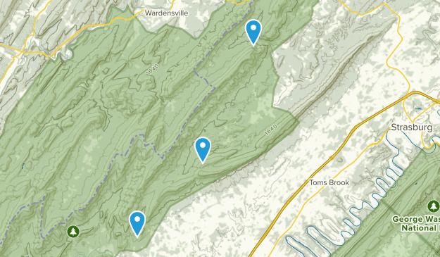 Maurertown, Virginia Map