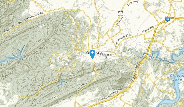 Pulaski, Virginia Map
