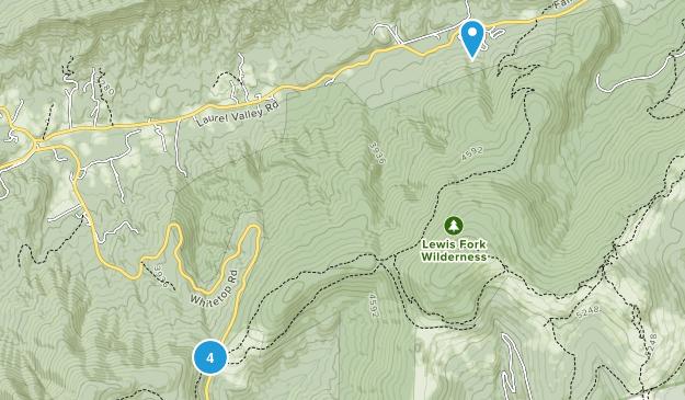 Trout Dale, Virginia Map