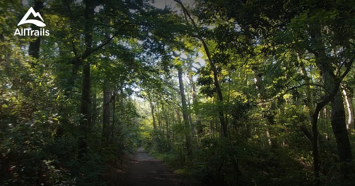 Best Hiking Trails In Virginia Beach
